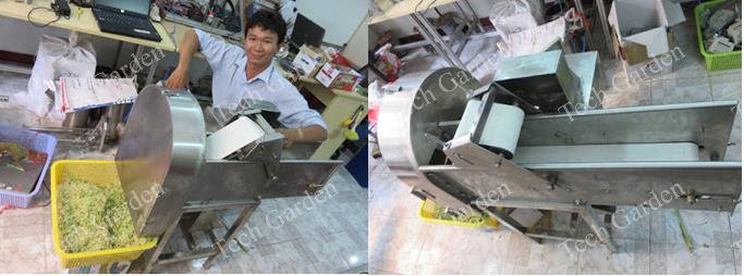 Hình ảnh: Máy thái sả có băng tải (công suất 100kg/giờ).