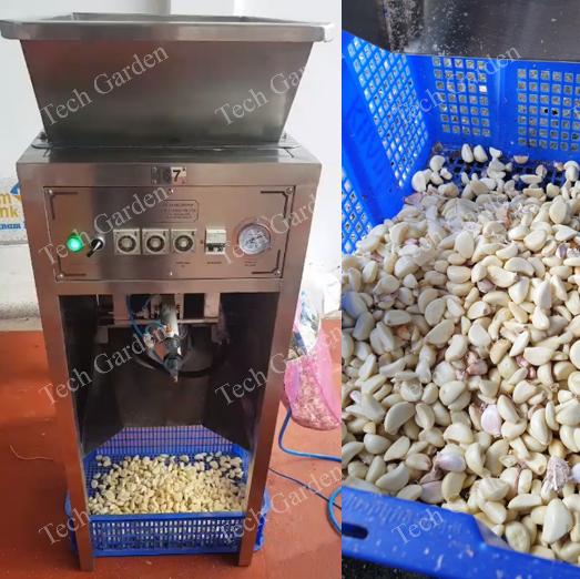 automatic garlic and onion peeling machine